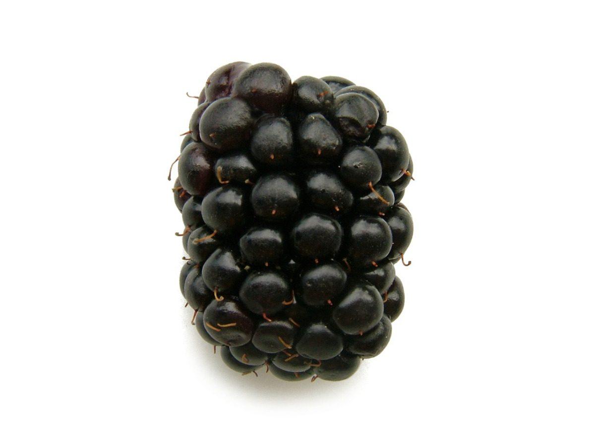 S1E15/16 – The Blacker the Berry by Kendrick Lamar